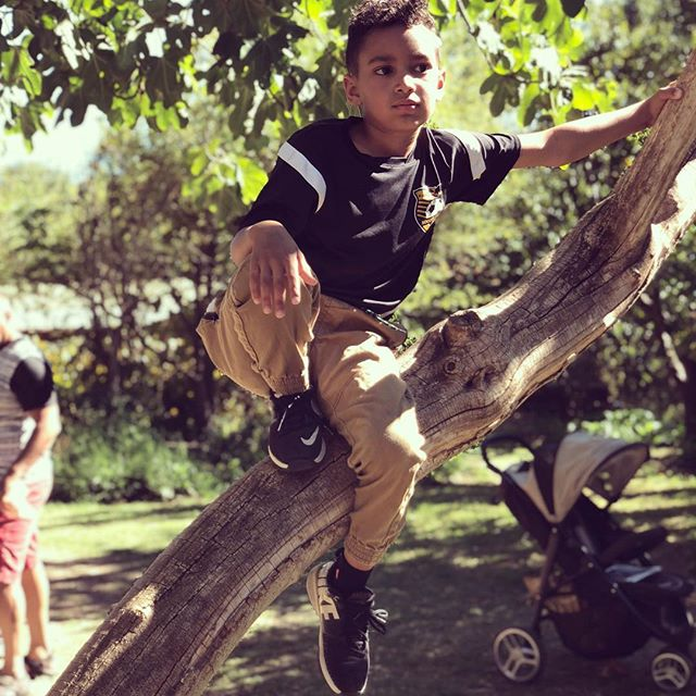 kid in a tree
