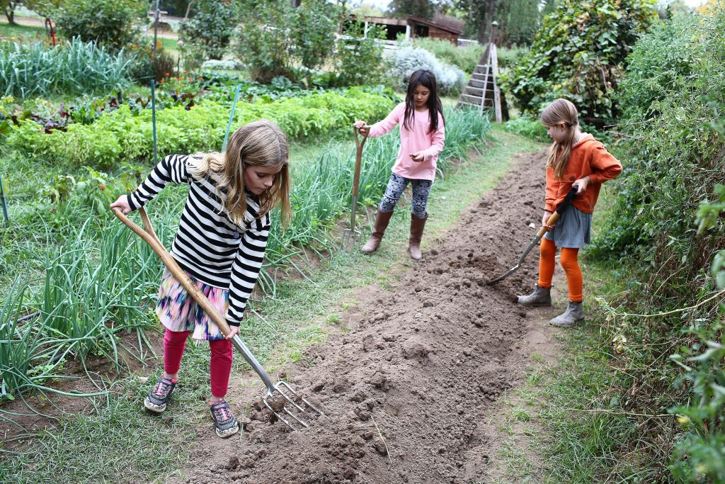 Lower School Students Make a Bed Ready for New Planting