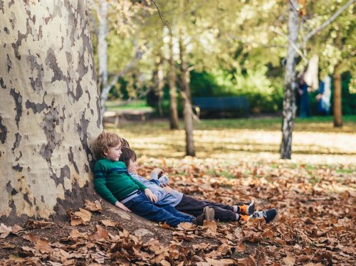 Boys are leaning against a big tree in an autumn park